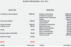 Budget_previsionnel_2013-2014.png