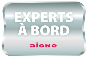 Diono 1