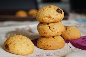 Biscuits-vanilles-pepites-de-chocolat-avec-jaunes-doeufs-.jpg