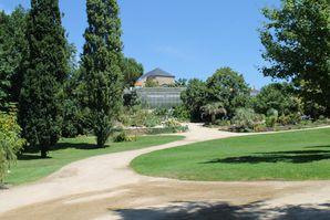 jardin-des-olfacties-aout-2013-220.JPG