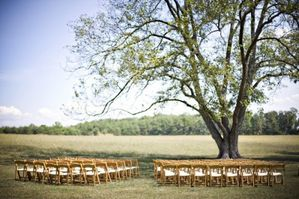 outdoor-wedding-ceremony-under-tree-500x333.jpg