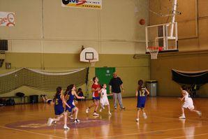 saison 2011-2012 : Poussines 0603
