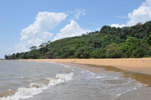Guyane-Francaise-1162.JPG