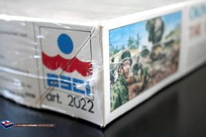 esci 2022-Okinawa the final clash-05