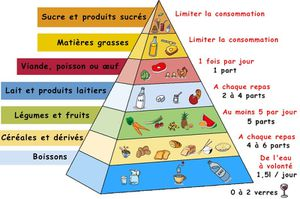 pyramide_alimentaire.jpg