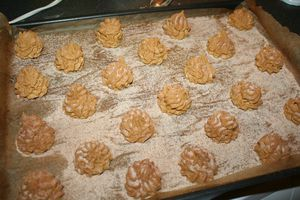 biscuit-snickers--2-.JPG