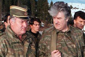 Mladic---Karadzic.jpg
