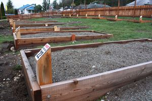 Community-Garden.jpg (Photo courtesy of Concrete Herald)