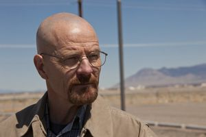 BREAKING-BAD-Problem-Dog-Season-4-Episode-7-13.jpg
