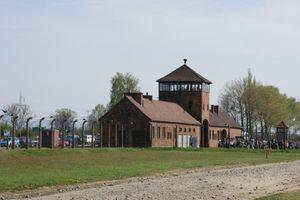 Auschwitz birkenau pologne (33)