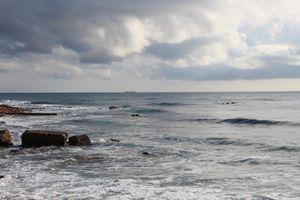 2011-2012-REUNION--AFRIQUE-4763.JPG