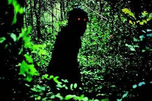 boonmee-3
