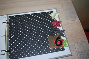 mini-album-1596fiskars.JPG
