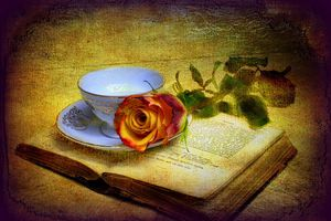 29834 rose-and-old-book p
