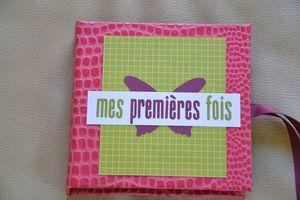 brouillon5 0213-copie-2