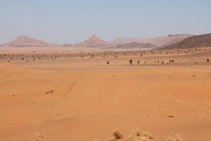 maroc-2013 8612 (2)