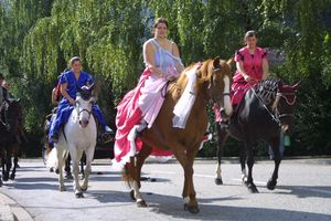 Festival des arts equestres ugine le blog de le cheval for Piscine ugine horaires