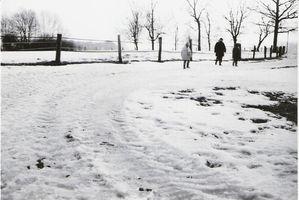 sw winter2010 4