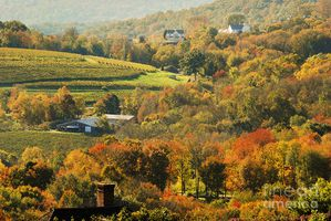 CONNECTICUT-litchfield-hills-connecticut-usa-sabine-zehetne