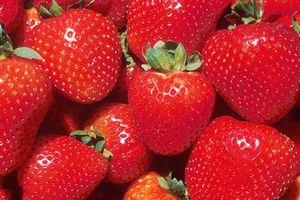 OKLAHOMA-strawberries380usda.jpg