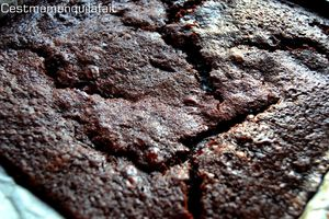 a fudge brownie sur biscuits au pepeites de chocol-copie-11