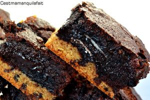 fudge brownie sur biscuits au pepeites de chocolat-copie-1