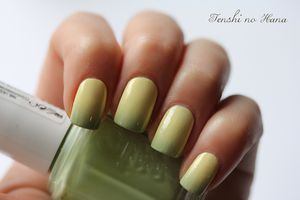 gradient models own essie navigate her 3