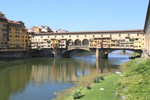 florence 9237