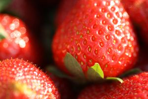 Fraises (88)