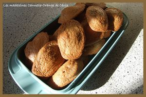 madeleines-orange-cannelle-Nath-.jpg