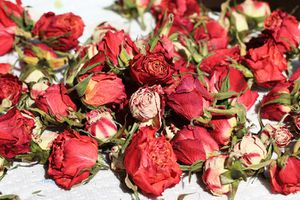 Pot-pourri roses-2
