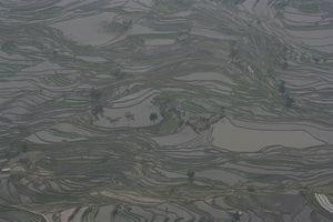 Chine 9152
