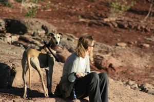 DIVI5-galga-adoption-galgos-ethique-europe-adopter-un-levri.JPG