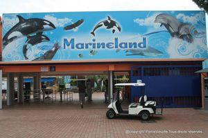 marineland011009 001