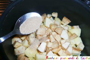 compote pomme-coing-banane 2