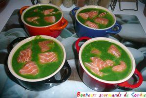 veloute cresson saumon 10