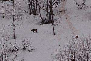 2012-04-03 Col des Montets 02
