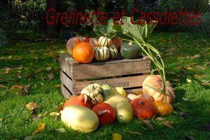 Octobre-2010 0134T