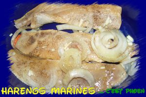 Harengs-fumes-marines.jpg