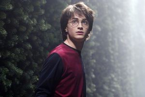 harry-potter-labyrinthe-4168322bcd.jpg