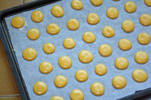 macarons 2235 modifié-1