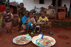 Cameroun 2010