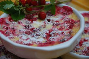 Moelleux fruits rouges du jardin 2