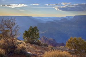 Grand Canyon Navajo Poin 48f5a16b1947a.jpg.pagespeed.ce