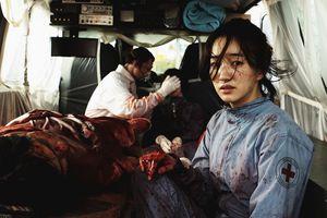 Pandemie-3.JPG