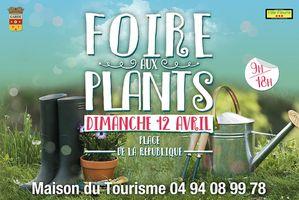 foire-aux-plants-La-Garde-2015.jpg