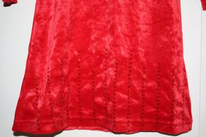 Robe-H-M-velours-paillette-detail.JPG
