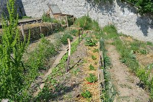 Les jardins en permaculture en is re le collectif de for Permaculture en pratique