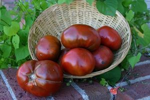 tomates-noires-paul-robeson.jpg