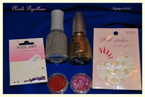 lot nails papillons 2 (1) bis2